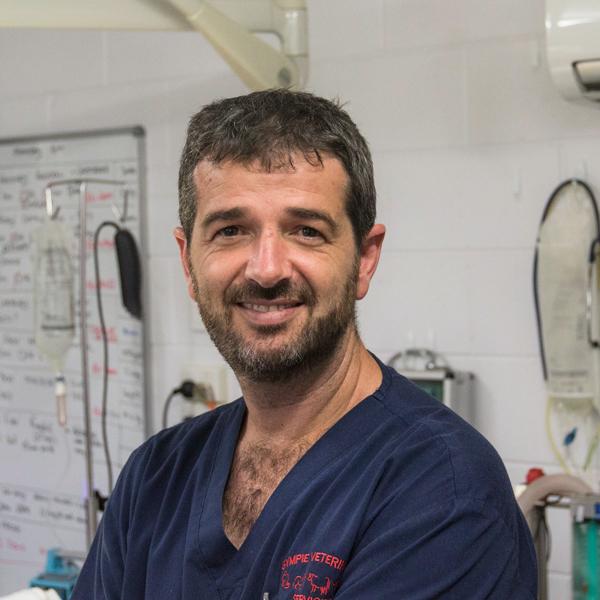 Dr Dan McDougall